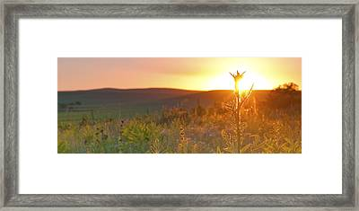Flint Hills Sunset Framed Print
