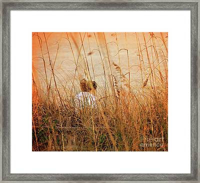 Flirting With Summer Framed Print