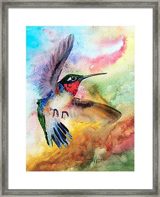 Da198 Flit The Hummingbird By Daniel Adams Framed Print