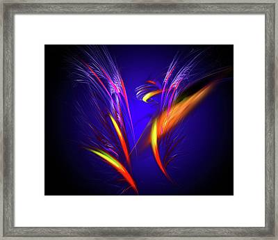 Float Colorful Feathers Framed Print