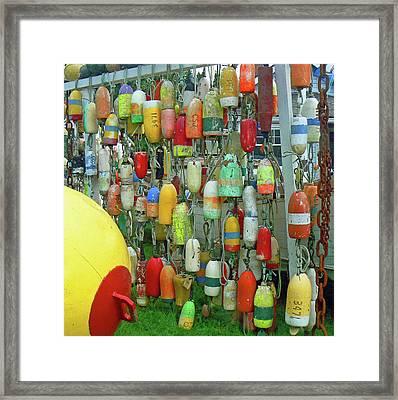 Float Wall Framed Print