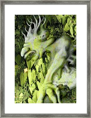 Floater In The Forrest Framed Print by J P Lambert