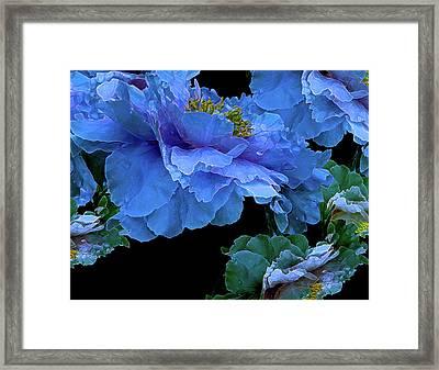 Floating Bouquet 14 Framed Print