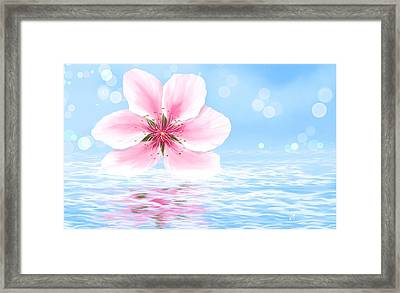 Floating Flower Framed Print by Veronica Minozzi