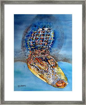 Floating Gator Framed Print by Maria Barry
