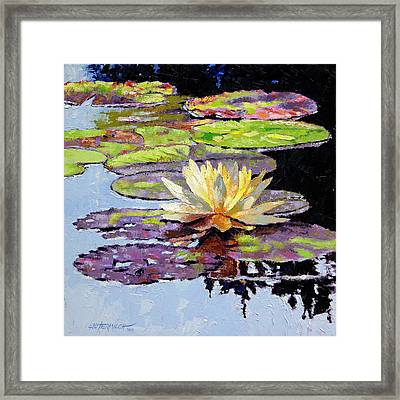 Floating Gold Framed Print by John Lautermilch