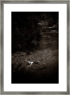 Floating In Light Framed Print by Scott Sawyer