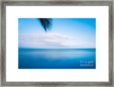 Floating In Mexico Framed Print by Jon Olmstead