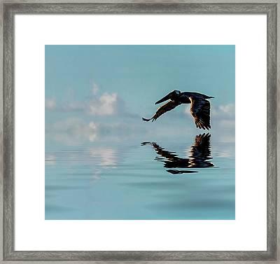 Floating On Air Framed Print by Cyndy Doty