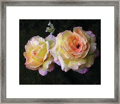 Floating Peace Framed Print