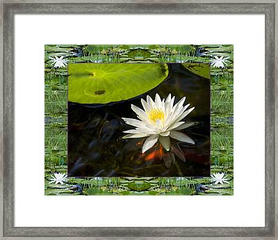 Framed Print featuring the photograph Floating White by Bell And Todd