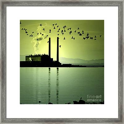 Framed Print featuring the photograph Flock Of Gulls by Craig B