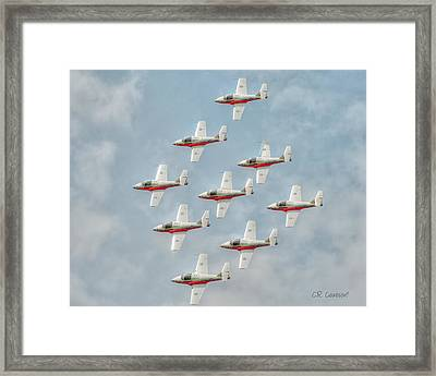 Flock Of Snowbirds Framed Print by CR  Courson