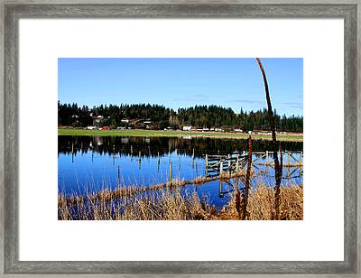 Flood Framed Print by Sergey and Svetlana Nassyrov