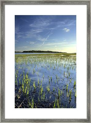 Flood Tide  Framed Print by Dustin K Ryan