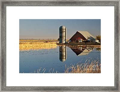 Flooded Rice Field Framed Print by Inga Spence