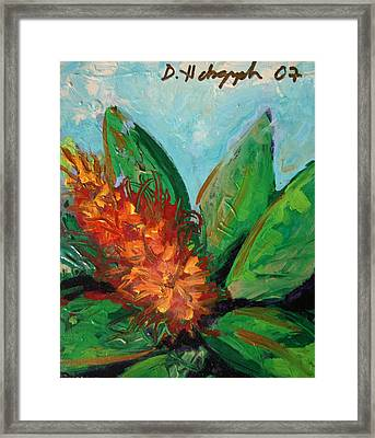 Flora Exotica B Framed Print by Dodd Holsapple