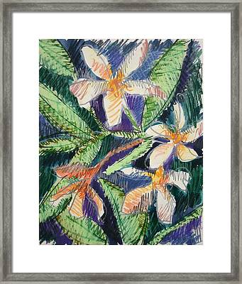 Flora Exotica Framed Print by Dodd Holsapple