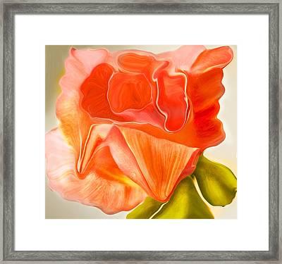 Flora Vita Bella Framed Print by Robert OP Parrish