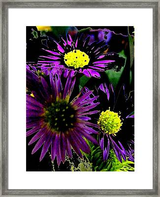 Floral 81 Framed Print by Chuck Landskroner