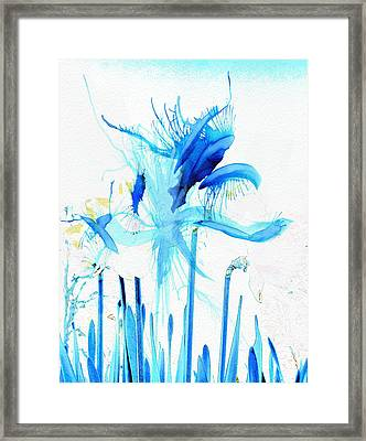 Floral Abstract Framed Print by Tom Gowanlock