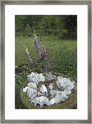 Floral Abstract With Anchor Framed Print by Robert Ponzoni