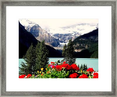 Floral And Ice Framed Print by Karen Wiles