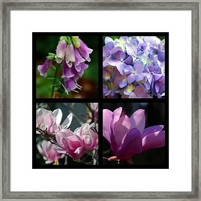 Floral Beauties Framed Print by Susanne Van Hulst