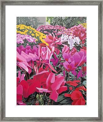 Floral Bloom Framed Print by Malcolm Warrilow