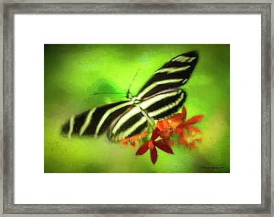 Floral Butterfly Framed Print by Marvin Spates