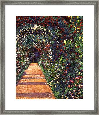 Floral Canopy Framed Print by David Lloyd Glover
