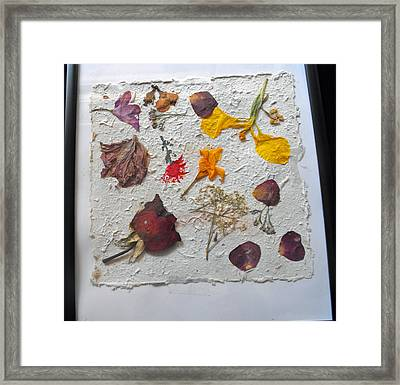 Floral Collage On Mullberry Handmade Paper Framed Print by Mircea Veleanu