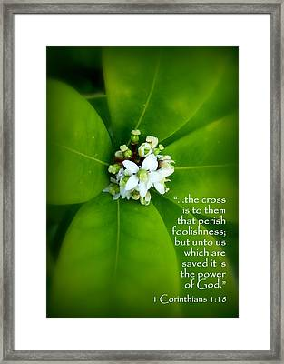 Floral Cross Scripture Framed Print by Cindy Wright