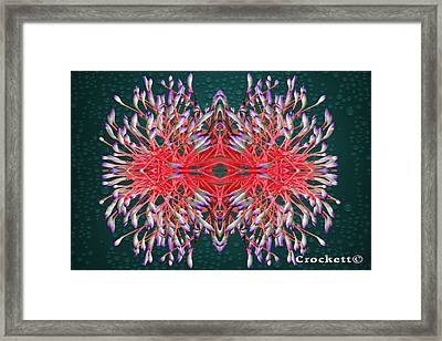 Floral Display Framed Print