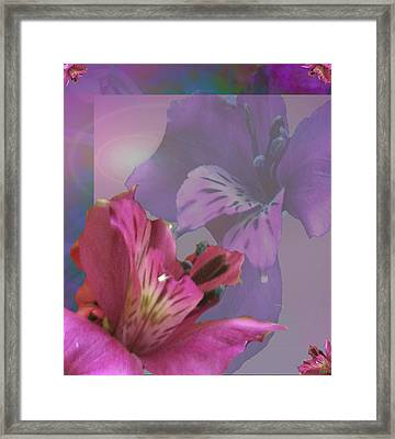 Floral Dust Framed Print by Debra     Vatalaro