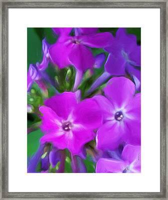 Floral Expression 2 021911 Framed Print by David Lane