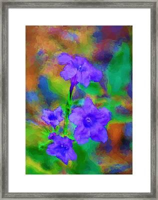 Floral Expression Framed Print by David Lane