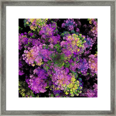 Floral Fancy Abstract Framed Print by Andee Design