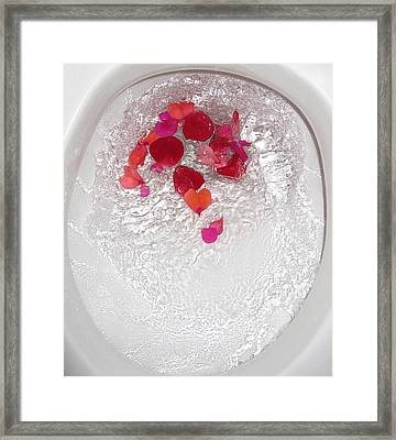 Floral Flush Framed Print