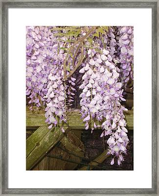 Floral Gate Framed Print
