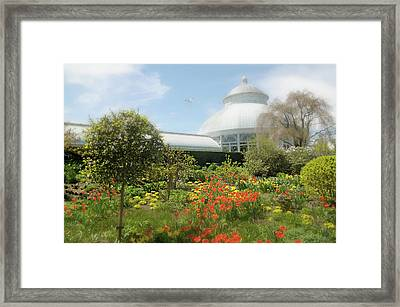Framed Print featuring the photograph Floral Notes by Diana Angstadt