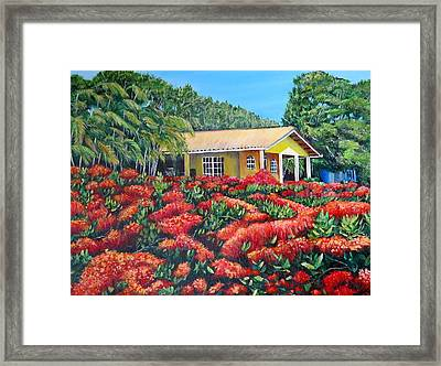 Floral Takeover Framed Print by Marilyn McNish