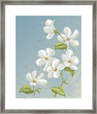 Floral Whorl Framed Print