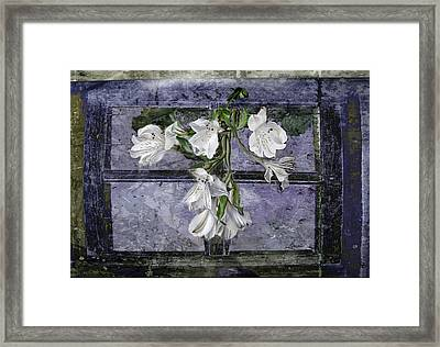 Framed Print featuring the photograph Floral Window Frame by Bonnie Willis