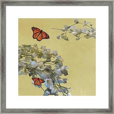 Floral05 Framed Print