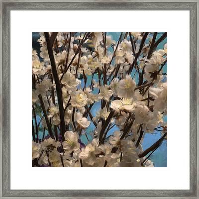 Floral08 Framed Print