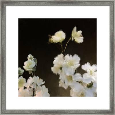 Floral11 Framed Print