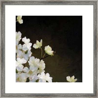 Floral12 Framed Print