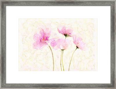Floralitou - 1213w19 Framed Print