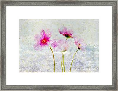 Floralitou - 1215v31 Framed Print